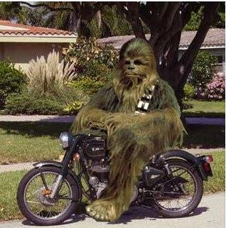 Chewbacca(new)