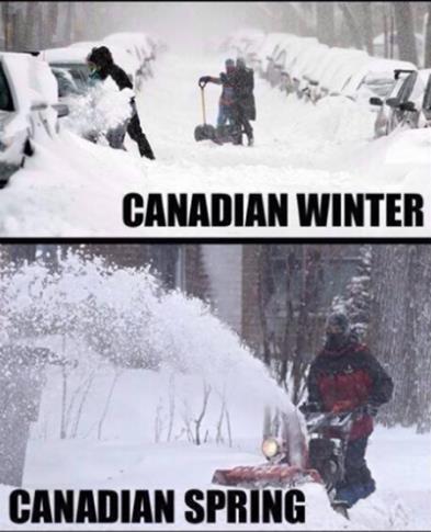 CanadianSpring