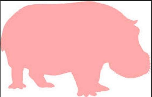 PinkHippo(newest)