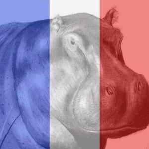 FrenchFlagHippo