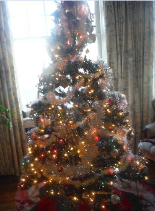 Tree2015
