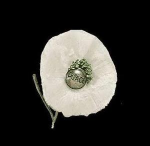 WhitePoppy(new)