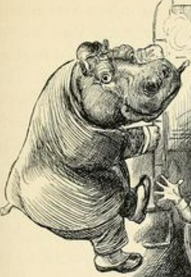 HippoSmoking